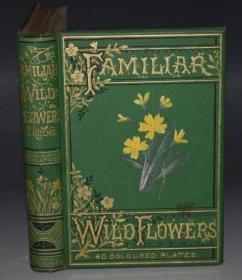 1870年- FAMILIAR WILD FLOWERS《常见野花图谱》第2辑初版本 珍贵满金彩绘豪华版 40枚手工上色珂罗版彩色插图 绝伦美艳