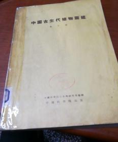 中国古生代植物图鉴