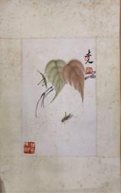 小品 贝叶草虫,齐白石 纸本旧裱镜片,高41.5宽26.5厘米,品旧如图