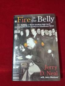 Fire in the Belly 精装16开