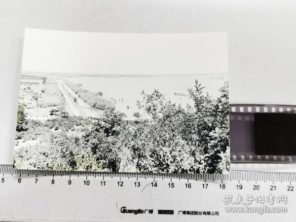 1960怀远县淮河大堤老照片底片加2002冲洗片