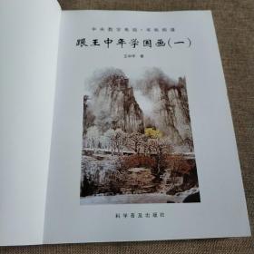 中国山水画研修院书匣糸列跟王中年学国画(1)/山石/树木