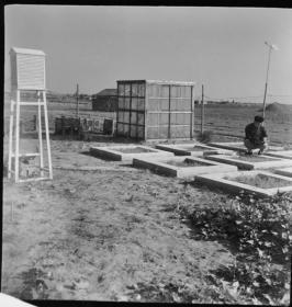 1977底片一张:小型气象观测站