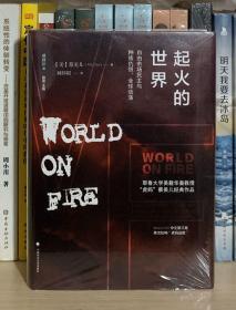 起火的世界:自由市场民主与种族仇恨、全球动荡(第二版)/雅理译丛(全新塑封)