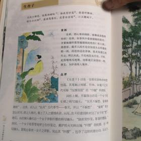 国学典藏馆 纳兰词图解详析(超值全彩珍藏版)