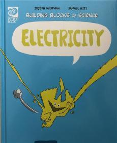精装 Electricity 电力