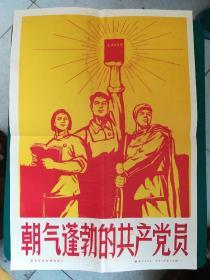 1970年朝气蓬勃的共产党员老照片15张全