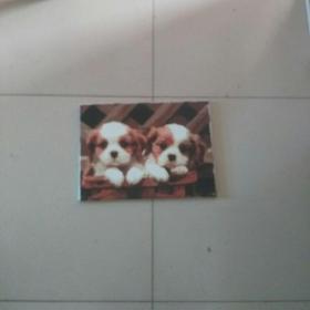精美的油画一对小狗