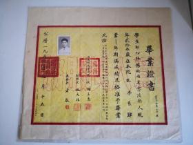 1953年西南师范学院毕业证书