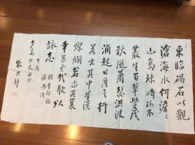 林老弟子朱兴邦书法 保真 约8平尺
