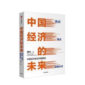 中国经济的未来