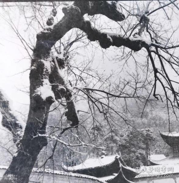 1983底片一张:雪中的九华山只园寺