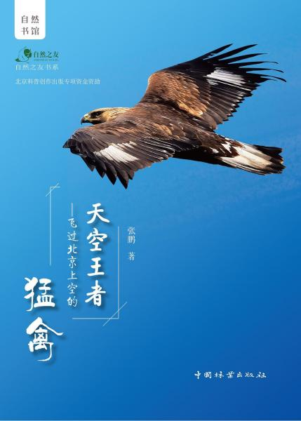 天空王者:飞过北京上空的猛禽