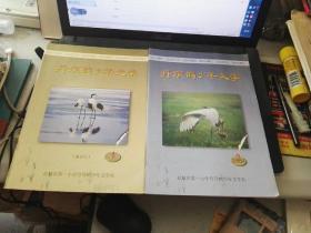 创刊号收藏:【丹顶鹤文学少年】 2003年第1,2期  合售!