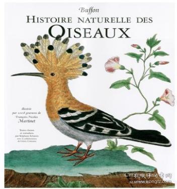 Histoire Naturelle Des Oiseaux