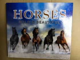 HORSES  BOLD BEAUTIFUL 超过80个马的品种特色 马的品种起源.特性和用途 精装英文版