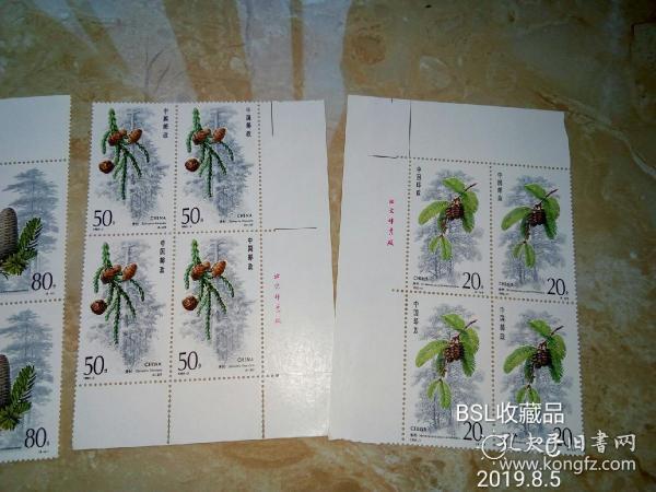 杉树方连邮票
