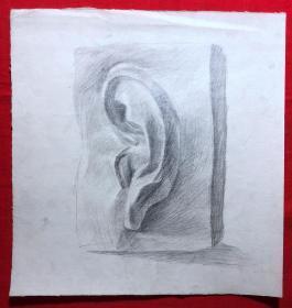 书画原作2872,巴蜀画派·名家【江溶】70年代素描画,静物.石膏.耳朵