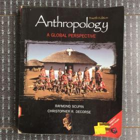 anthropology a global perspective(英文原版16开)