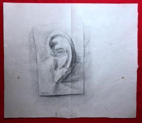 书画原作2883,巴蜀画派·名家【江溶】70年代素描画,石膏.耳朵