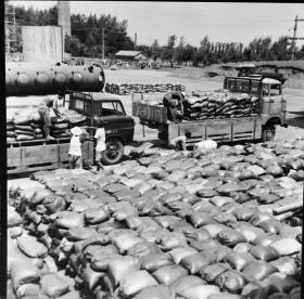 1982底片一张:六安化肥厂化肥外运