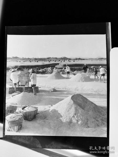 1964底片一张:南陵县葛林公社社员晒粮食准备卖给国家