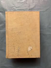中国树木分类学 (16开 布面 精装)1959年 一版一印 土纸本 品好