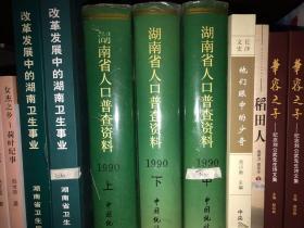 湖南省1990年人口普查资料 上中下册