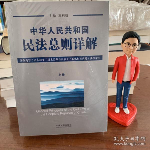 中华人民共和国民法总则详解(套装上下册)