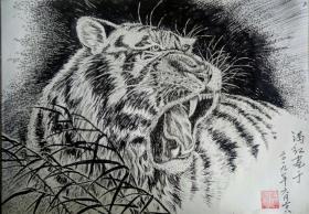 【虎】钢笔画