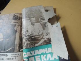 CAXAPHAяCBEKA1964年4、5、7、8、11共5期(俄文期刊)