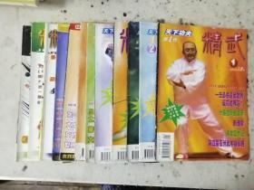 精武杂志1999