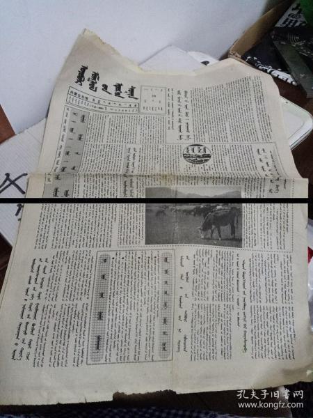 1996年蒙文赤峰日报(两张)