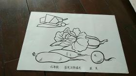 宣传画 8开 《墨笔勾勒填色 蔬菜》