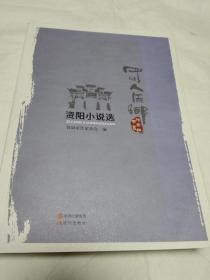 资阳小说选(全套3册,单册出售)