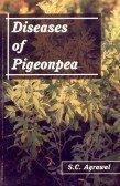 Diseases of Pigeonpea
