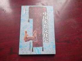 中国术数文.化史