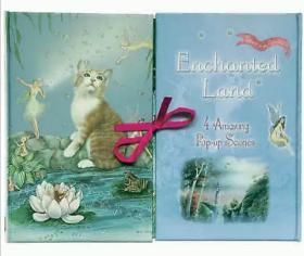 Enchanted Land: 4 Amazing Pop-up Scenes (Tales from Fairyland) 立体书