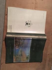 四川省渡口市地名录--四川省地名录丛书之二十四(附图)