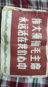 伟大领袖毛主席永远活在我心中 新闻展览照片农村普及版