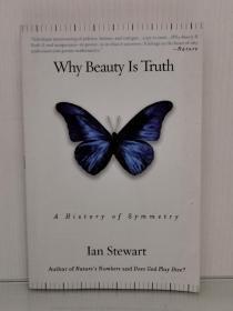 为什么美即真理:对称的历史 Why Beauty Is Truth:A History of Symmetry by Ian Stewart (数学)英文原版书