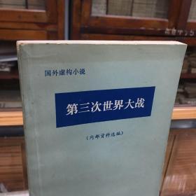 第三次世界大战(国外虚构小说)