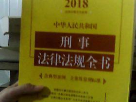 中华人民共和国刑事法律法规全书(含典型案例、立案及量刑标准)(2018年版)