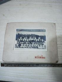 上海详德路幼儿园第七届出园生留影1964年