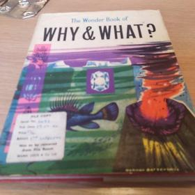 The Wonder Book of Why and What                  c