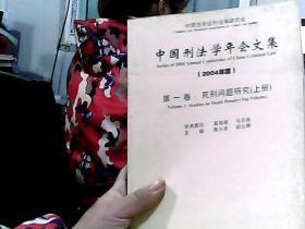 中国刑法学年会文集·第1卷:死刑问题研究 上册(2004年·度)