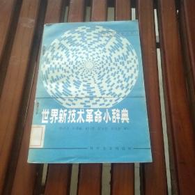 世界新技术革命小词典