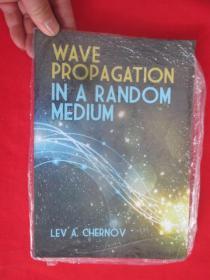 Wave Propagation in a Random Medium       ( 16开 )   【详见图】