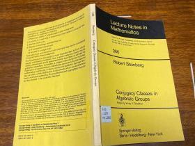 Conjugacy Classes in Algebraic Groups