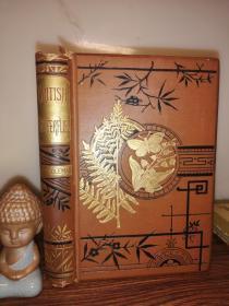 1883年 BRITISH BUTTERFLIES BY W.S. COLEMAN  含精美彩图 烫金封面  18.6X13CM